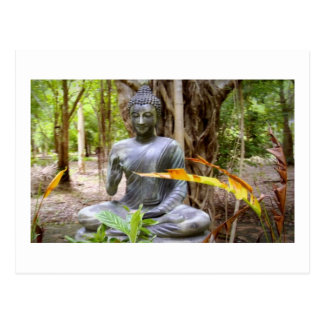 仏の   仏教の平和 ポストカード