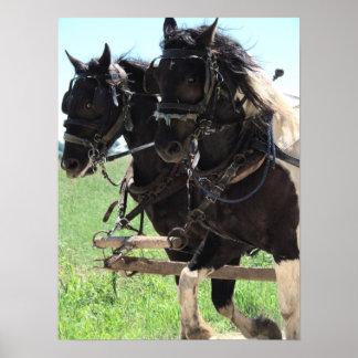 仕事のまだら馬の草案 ポスター