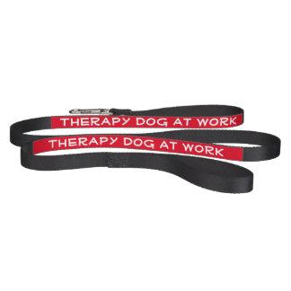 仕事(鎖)のセラピー犬 ペットリード
