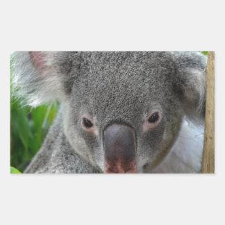 休みます、幸せなコアラ 長方形シール