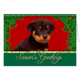 休日のロットワイラーの子犬 カード