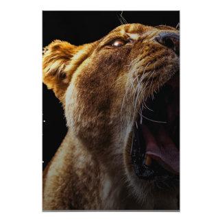 伝説のライオン フォトプリント