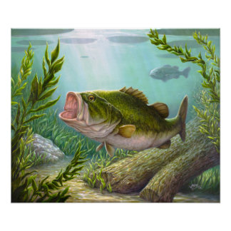 低音の魚 ポスター