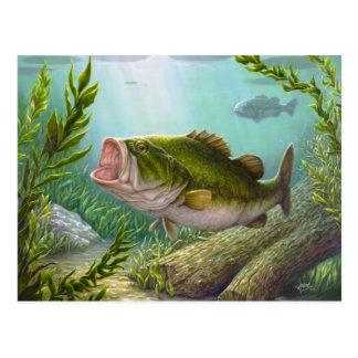 低音の魚 ポストカード