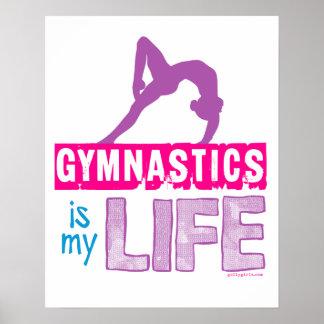 体操は私の生命です ポスター