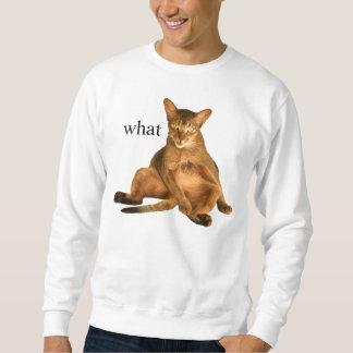 何 スウェットシャツ
