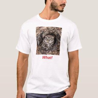 何! Tシャツ