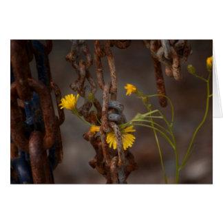 侵略的な花 カード