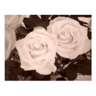 保存日付または結婚式のバラ ポストカード