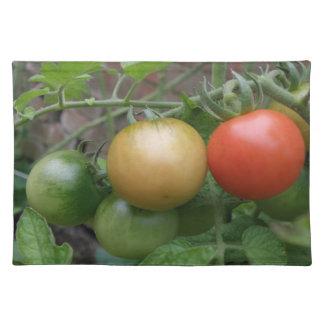 信号のトマトのランチョンマット ランチョンマット