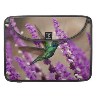信頼のきらめくなすみれ色耳のハチドリの翼 MacBook PROスリーブ