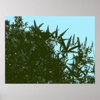 修道士のコショウの上品な木のベクトルポスター ポスター