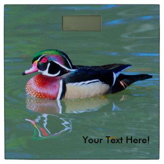 (個人化して下さい)池のオスのアメリカオシ 体重計