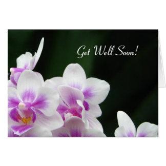 健康なすぐに花の挨拶状を得て下さい カード