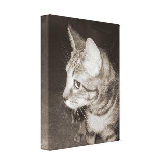 側面は猫に直面しました キャンバスプリント