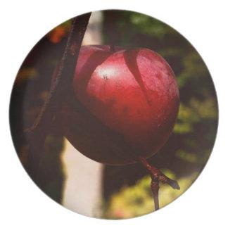 偶然の野生リンゴの木のメラミンプレート プレート