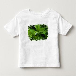 偽のHelaboreの結露 トドラーTシャツ