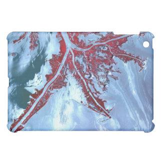 偽色衛星 iPad MINIカバー