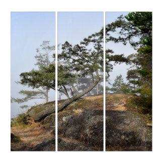 傾斜の木 トリプティカ