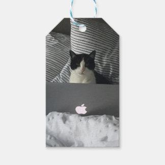 働く猫 ギフトタグ