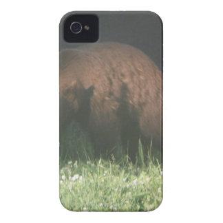 兄弟くま Case-Mate iPhone 4 ケース