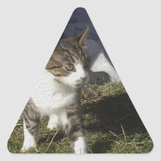 兄弟 三角形シール