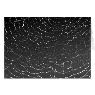 光っているSpiderweb カード