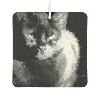 光沢がある黒猫 カーエアーフレッシュナー