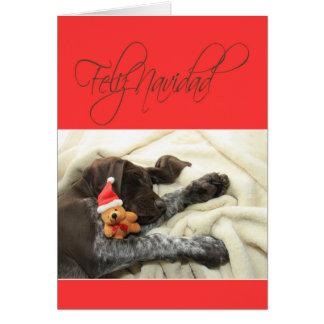 光沢のあるハイイログマのクリスマスFeliz Navidad カード