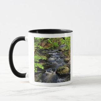 入り江は森林を貫流します マグカップ