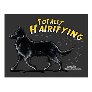 全くベルギーの牧羊犬Hairifying ポストカード