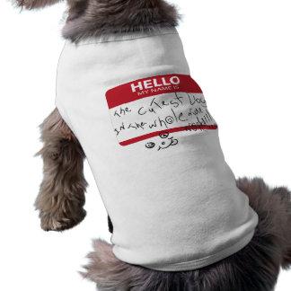 全世界の最もかわいい犬 ペット服