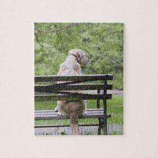 公園のベンチに坐っている犬 ジグソーパズル