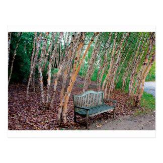 公園のベンチ1 ポストカード