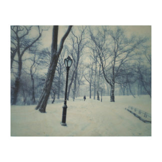 公園の吹き荒れる歩行 ウッドウォールアート