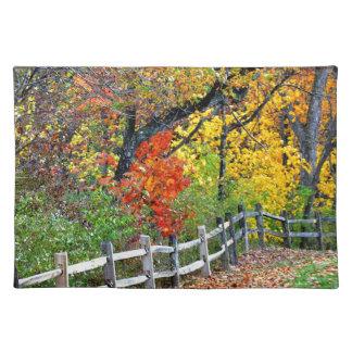 公園の塀 ランチョンマット