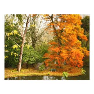 公園の秋 チラシ
