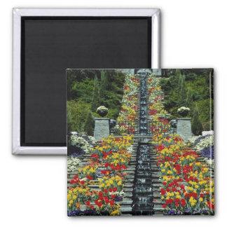 公園の赤、Mainauの花 マグネット