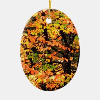公園ポートランドオレゴンの秋のブナの木 セラミックオーナメント