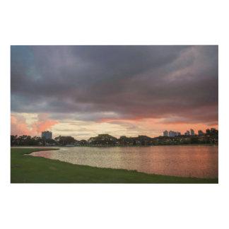 公園上の日没 ウッドウォールアート