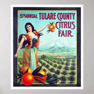公平なTulare郡の柑橘類 ポスター