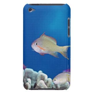 公平の太平洋のbaslet Case-Mate iPod touch ケース