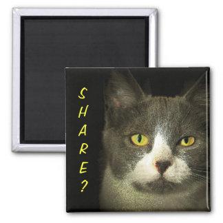 共有か。 得られた残り物か。 Hugeryの子猫 マグネット