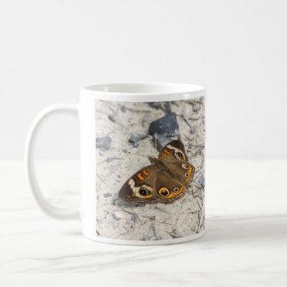 共通のバックアイズ コーヒーマグカップ