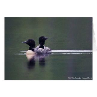 共通の水潜り鳥のカップル カード