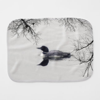 共通の水潜り鳥は冬の北湖で泳ぎます バープクロス