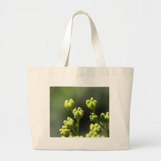 共通の通り(Rutaのgraveolens)のフルーツ ラージトートバッグ
