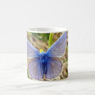 共通の青い蝶虫のマグ コーヒーマグカップ