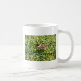 共通のWaxbill コーヒーマグカップ
