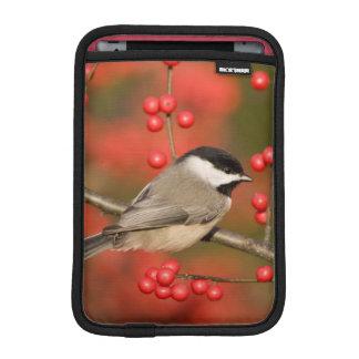 共通のWinterberryの薮のカロライナ《鳥》アメリカゴガラ iPad Miniスリーブ